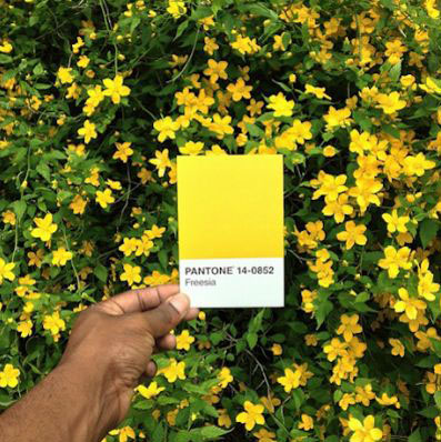 Pantone swatches matched to the world (via Laughing Squid -- Thanks, Annie!)