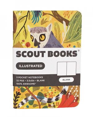 Meg Hunt Scout Books