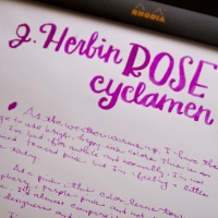 Ink Review: J. Herbin Rose Cyclamen